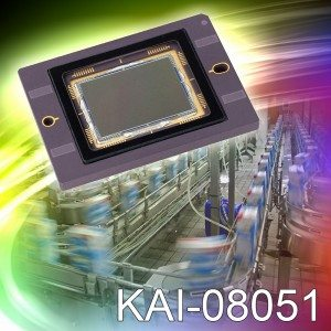 KAI08051-HRES
